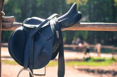 Learn The Basic Equipment You'll Need To Care For and Use Your First Horse