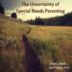 I assume that most, if not all, childhood diagnoses carry with them the heavy, backbreaking baggage of uncertainty. Autism most...