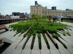 New York High Line by designer James Corner and architect Richardo Scofidio. An elevated urban park system built on top of the skeleton of an old rail system.