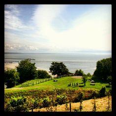 Vue imprenable depuis les Jardins Suspendus Le Havre, France, Golf Courses, Country, Green, Outdoor, Instagram, Hanging Gardens, Outdoors