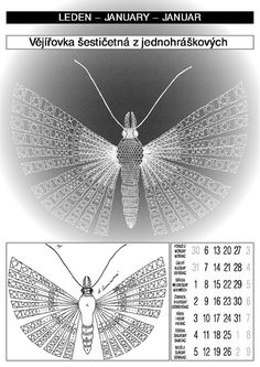 календарь 2003 Hand Embroidery Flowers, Bobbin Lace, Irish Crochet, Dandelion, Insects, Butterfly, Interiors, Bobbin Lace Patterns, Butterflies