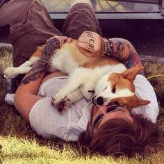 Danny Worsnop and his Corgi Luci      ughhhh I have to wait until September to finally meet you /: