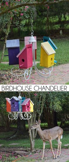 This birdhouse chandlier is a great way to repurpose old lighting! Birds get a new home and the garden gets some quirky color!