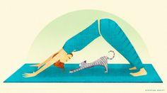Yoga-Cat  #yoga #downwarddog #cat
