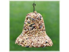 Bird seed feeders: squirrel proof, how to make Bird Seed Feeders, Bird Cages, Pretty Birds, Beautiful Birds, Bird Seed Ornaments, Decorative Bells, Squirrel, Decorating Your Home, Outdoor Decor
