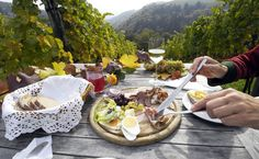 Styrian wine country in Leutschach Visit Austria, Vienna Austria, Vienna Woods, Cycling Holiday, Central And Eastern Europe, Day Tours, Wine Country, Catering, Eat