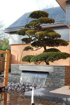 Pierre naturelle CUPA pour le jardin, l'aménagement paysager et le design d'extérieur   #pierre #naturelle #design #exterieur #decoration #architecture