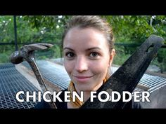 Today, we will be building a chicken fodder table inside the chicken run in order to provide our chickens with continuous fresh, green forage. Plants For Chickens, Chickens Backyard, Chicken Runs, Over The Years, Building, Table, Youtube, Homestead, Rabbit