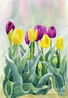 Yellow And Red Violet Tulips With Background Painting