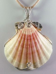 This lovely wire wrapped pastel Scallop shell pendant measures 2 high and 2 wide, including the large triple bail. It is a lovely piece, with ju Wire wrapped pendant Wire Pendant, Shell Pendant, Wire Wrapped Pendant, Wire Wrapped Jewelry, Metal Jewelry, Beaded Jewelry, I Love Jewelry, Jewlery, Jewelry Armoire