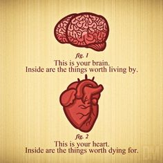 this is your brain...this is your heart. would be a cool tattoo