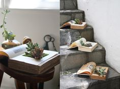 """1 Vintage book.  2-3 small succulents. Any more than that will get really heavy. Home  Depot sells them for like $2 each. Be wary of """"top-heavy"""" succulents  as they are hard to keep leverage in such a relatively shallow pot.  Even little miniature cactuses are nearly impossible to keep erect.  """"Wide and flatter"""" work MUCH better than """"tall.""""  Little bit of potting soil  1 exacto knife  Parchment paper or plastic bag  White glue  Dry moss or ground cover"""