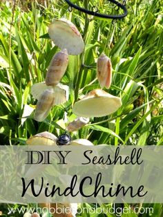 Got special seashells from the beach?  Here's how to turn them into a simple windchime!