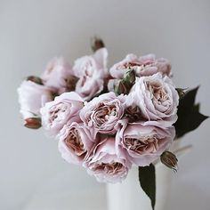 Best feeling ever is on a sunday evening, not having to set my alarm to wake up the next day #happypublicholiday #nomondayblues . . . . 📷: @nonihana_ #flowers #homesweethome  #florist #interiordecor #decor #love #secretlyloveit #blogger #melbourneflorist #melbourne #wedding #weddinginspo #melbourneblogger