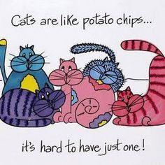 Laid Back Cat Amigurumi : DIFER. ARTES CON GATICOS on Pinterest Cat Art, Laurel ...