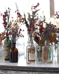 Dried flowers in old bottles