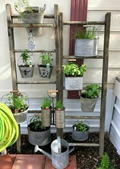 First, hello! I've never posted here, although I've been viewing the wonderful posts here for a long, long time. Thanks to everyone who takes the time to post… Vertical Vegetable Gardens, Vertical Garden Wall, Lakeside Garden, Garden Ladder, Low Maintenance Garden, Garden Pots, Herb Garden, Indoor Garden, Outdoor Gardens