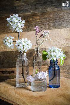 flowers in bottles by markmartucciphoto, via Flickr