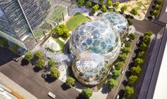 Amazon to build futuristic HQ of greenhouse domes in downtown Seattle | Art and design | theguardian.com