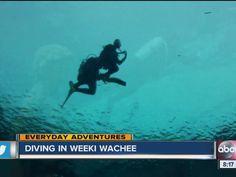 Everyday Adventure: Diving at Weeki Wachee Springs