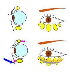 Eyes, Skin Care, Slacks, Blog, Beauty, Skin Treatments, Beauty Illustration, Asian Skincare, Skincare