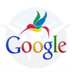 How do I recover from Google Hummingbird?