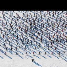 Sport and snow