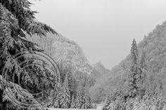 Snow Dixville Notch ahh four miles from my bed? Love the snow