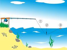 Zajímavé! Fishing, Bass Fishing, Peaches, Pisces