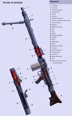 Military Weapons, Weapons Guns, Guns And Ammo, Military Art, Military History, Regard Animal, Mg34, German Soldiers Ww2, Battle Rifle