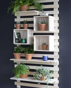 House Plants Decor, Plant Decor, Garden Projects, Wood Projects, Woodworking Projects, Woodworking Plans, Garden Ideas, Woodworking Videos, Easy Garden
