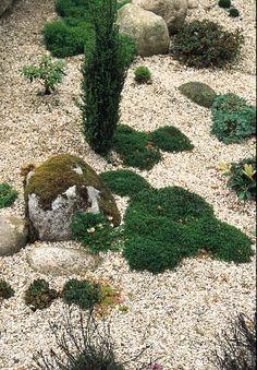 Kiesgarten anlegen und mit Gräsern bepflanzen