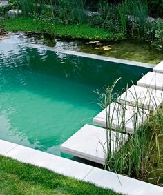 """A """"natural pool"""" for a backyard - no chemical additives."""