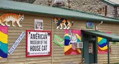 See the collectibles, art and interesting relics at this quirky American House Cat Museum near Dillsboro and Sylva. Weird Facts, Fun Facts, Strange Facts, American Houses, Cat Lovers, Museum, Cats, Travel, Animals