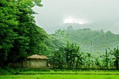 Village, Bangladesh Green Valley, Beaches In The World, Cottage Homes, Natural Beauty, Tourism, Environment, Boat, River, Mountains