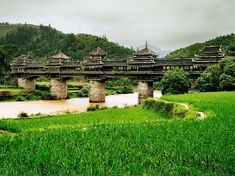 """Nicknamed the """"Wind and Rain Bridge"""" and hidden amongst the rice fields and mountains, this bridge is found in the Guangxi Province of China spanning the Linxi River. Built in 1916 by the Dong people, an ethnic minority in China, the bridge has five separate pagoda structures with porches and pavilions. The traditional Chinese architecture makes for a fantastic looking structure but the most amazing thing about this bridge is that during construction, not a single nail was used, relying…"""
