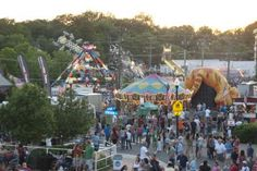 Summer Fun at the Herndon Festival