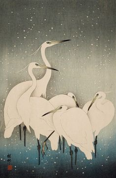 Egrets in Snow Ohara Shōson (Koson) (Japan, 1877-1945) Japan, 1927 Prints; woodcuts Color woodblock print Image: 14 1/4 x 9 11/16 in. (36.2 x 24.6 cm); Paper: 15 3/16 x 10 3/8 in. (38.7 x 26.3 cm) Anonymous gift (M.73.75.37) Japanese Art