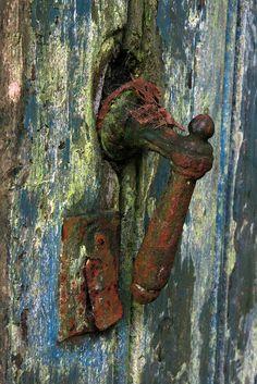 Rusty door, Fort Abcoude, the Netherlands, via Flickr.