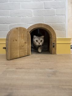 Un loft para que tu gato disfrute | Visioninteriorista.com