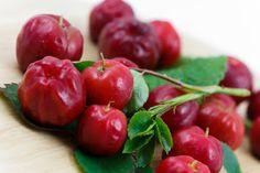 receitas fernandes: curiocidades sobre a fruta acerola