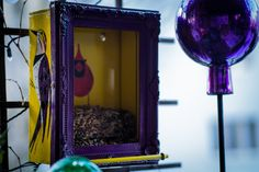 Peekaboo, Charley Harper, Eva Pils Birdhouse, Charley Harper, Birdhouse, Oversized Mirror, Mid Century, Diy, Design, Home Decor, Decoration Home, Bricolage