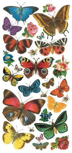 Your place to buy and sell all things handmade Self Adhesive Butterfly Stickers 1 Sheet Colorful Scrapbooking Stickers Number 96 Planner Stickers, Scrapbook Stickers, Vintage Butterfly, Butterfly Art, Beautiful Bugs, Beautiful Butterflies, Etiquette Vintage, How To Make Stencils, Butterfly Pictures
