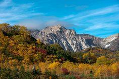 Tsugaike Nature Park in Fall par Tak Iwayoshi a good experanse