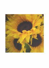 Mens Silk Pocket Square - Sunflowers Line by VIDA VIDA N4qdqP2Rj