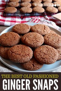 Old-Fashioned Ginger Snap Cookies have a little crunchy snap and a spicy ginger bite. They're perfect for the holidays or just to dunk into a cup of coffee or tea. Ginger Snaps Recipe, Ginger Snap Cookies, Healthy Ginger Snaps, Sweet Cookies, Sugar Cookies, Baking Recipes, Cookie Recipes, Dessert Recipes, Protein Recipes