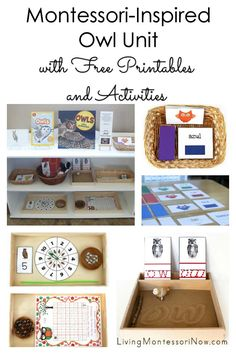 By Deb Chitwood from Living Montessori Now I'm in love with owl activities for fall. My 3¾-year-old granddaughter, Zoey, is now, too! I ...