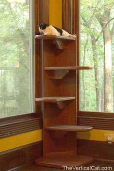 Mr. Ernie needs this.  Now to convince my dad he can build this....  5' Alexa Corner Cat Tree by TheVerticalCat on Etsy, $272.00