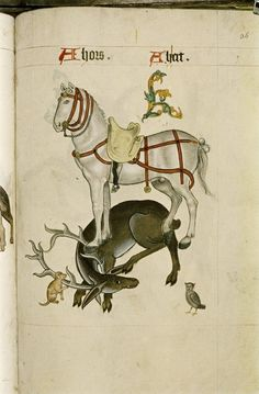 """Horse and hart, Poppy, a small-eared owl, in """"The Tudor Pattern book"""", ca. Medieval Horse, Medieval Art, Medieval Manuscript, Illuminated Manuscript, Bayeux Tapestry, Medieval Paintings, Danse Macabre, Pattern Books, Animal Paintings"""