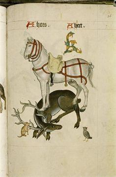 Tudor pattern book